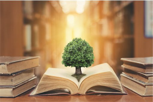 Open book with tree of knowledge