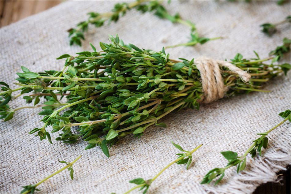 thyme gargle for sore throat