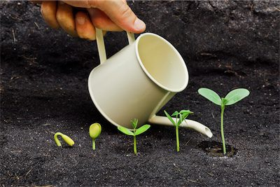 Discovery call watering can with sprouting plants