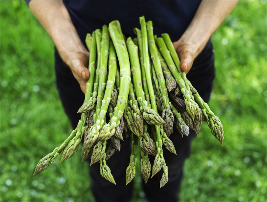 health benefits of asparagus for acne
